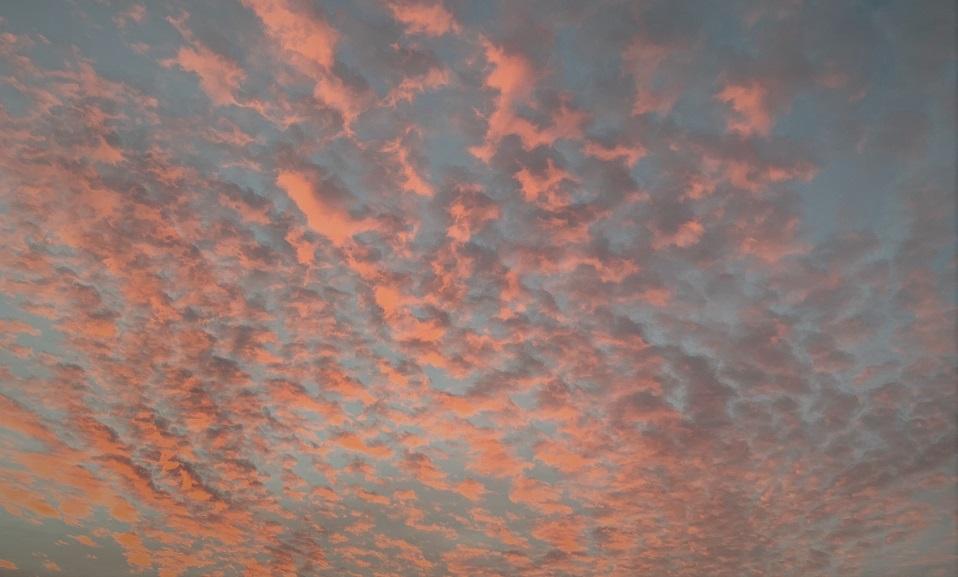 Als vruchtbaarheidsproblemen je roze wolk verstoren
